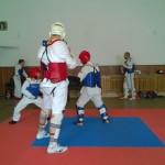 taekwondo-WTF-soustredeni-2014-2
