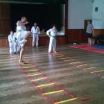 taekwondo-WTF-soustredeni-2014-4