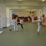 taekwondo-frydek-mistek-lacek5